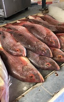 fish processing equipment, vac air inc, fish processing equipment supplier